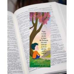 Semn de carte –  Pierdut și...