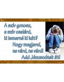 HU Inceputurile_CD